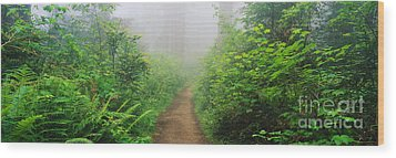 Route 1 In Northern California Wood Print by Joseph Sohm ChromoSohm Media Inc