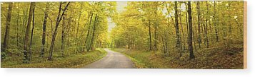 Route Dans La Foret Jaune Wood Print