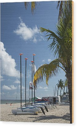 Row Of Sailboats Wood Print