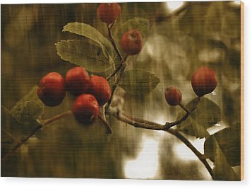 Wood Print featuring the mixed media  Berry Nice by Fine Art By Andrew David