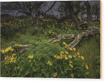 Rowena Preserve Wood Print by Jean-Jacques Thebault
