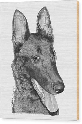 Roxy - 028 Wood Print by Abbey Noelle