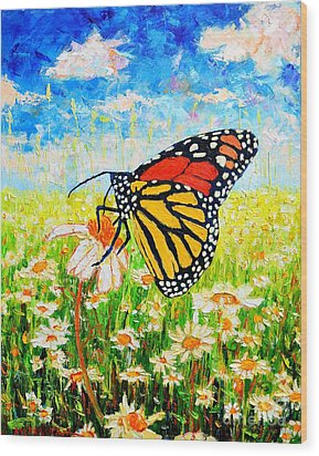 Royal Monarch Butterfly In Daisies Wood Print by Ana Maria Edulescu