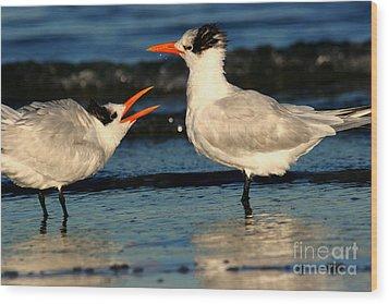 Wood Print featuring the photograph Royal Tern Courtship Dance by John F Tsumas