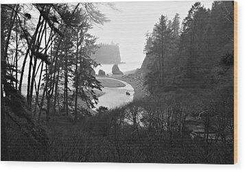 Ruby Beach In The Winter In Black And White Wood Print by Jeanette C Landstrom
