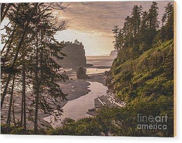 Ruby Beach Landscape Wood Print