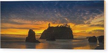 Ruby Beach Olympic National Park Wood Print by Steve Gadomski