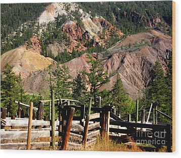Wood Print featuring the photograph Rugged Beauty by Kathy Bassett
