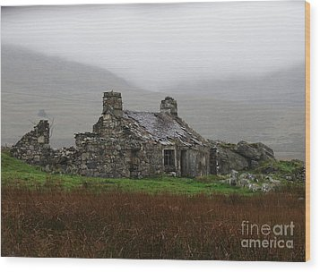 Ruined Cottage Snowdonia Wood Print by Nicola Butt