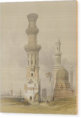 Ruined Mosques In The Desert Wood Print by David Roberts