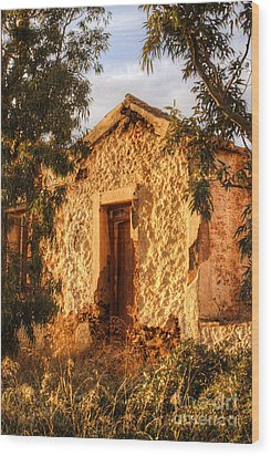 Ruined Sounion House 8 Wood Print by Deborah Smolinske