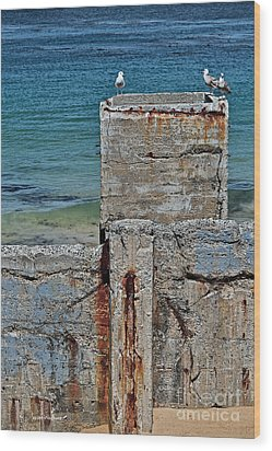 Ruins At Monterey Bay Wood Print by Susan Wiedmann