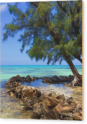 Rum Point Cove Wood Print