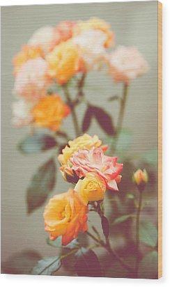 Wood Print featuring the photograph Rumba Rose by Ari Salmela