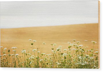 Run With Me Through A Field Of Wild Flowers Wood Print by Artist and Photographer Laura Wrede
