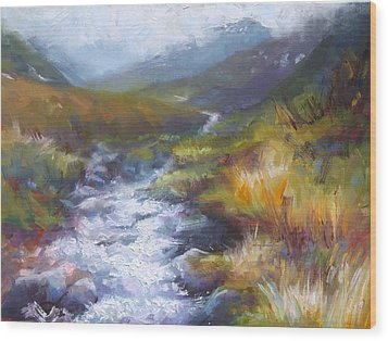 Running Down - Landscape View From Hatcher Pass Wood Print by Talya Johnson