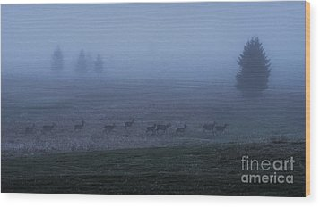 Running In The Mist Wood Print by Yuri Santin