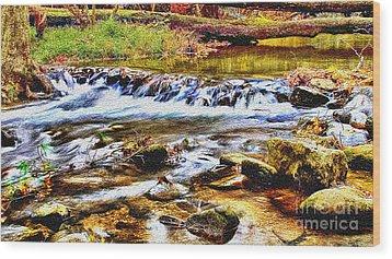 Running Stream In Yosemite National Park Wood Print by Bob and Nadine Johnston