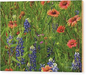Rural Color Wood Print by Joe Jake Pratt