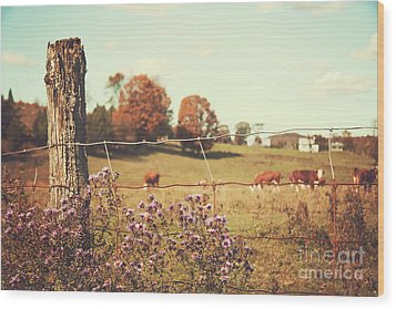 Rural Country Scene Wood Print by Sandra Cunningham