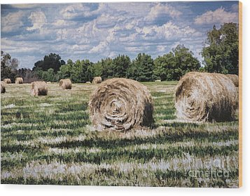 Wood Print featuring the painting Rural Georgia by Linda Blair