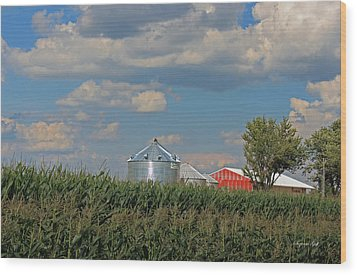 Rural Indiana Scene - Adams County Wood Print by Suzanne Gaff