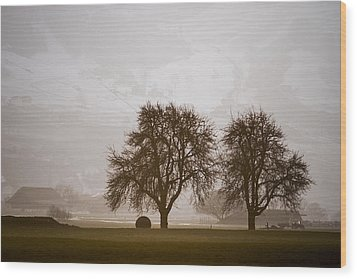 Wood Print featuring the photograph Rural Landscape #4 by Antonio Jorge Nunes