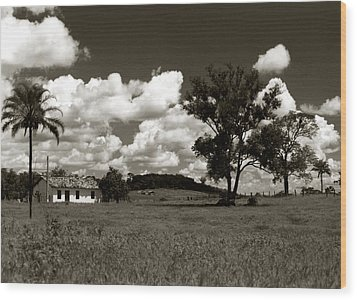 Rural Landscape Wood Print by Amarildo Correa