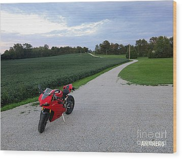 Rural Road In Indiana Wood Print by AntiHero