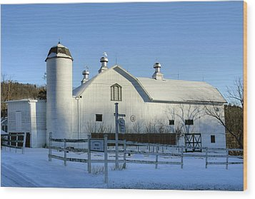Rural Winter Whites And Blues Wood Print by Gene Walls