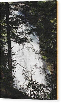 Rushing Through The Trees Wood Print
