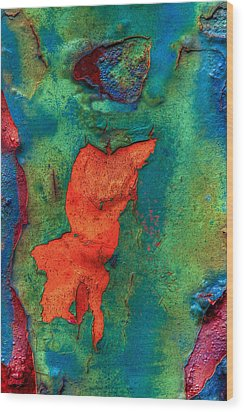 Wood Print featuring the photograph Rust Is Beautiful by Jerry Gammon
