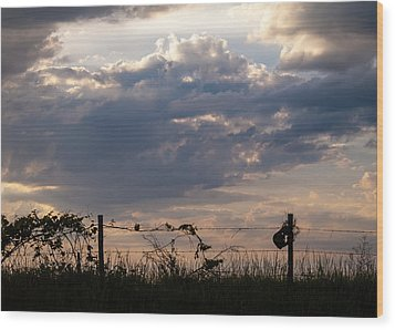 Wood Print featuring the photograph Rusted Bucket by Wayne Meyer