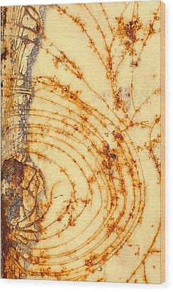 Rusted Web Wood Print by Rebecca Skinner
