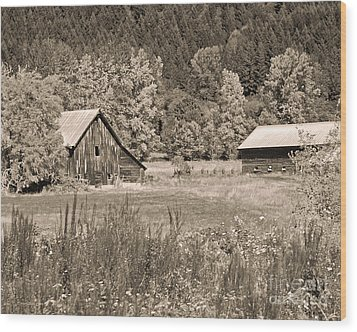 Rustic Beauty In Sepia Wood Print by Connie Fox
