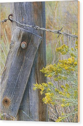 Rustic Fence And Wild Flowers Montana Wood Print by Jennie Marie Schell