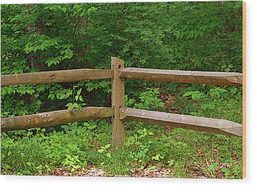 Rustic Fence Wood Print