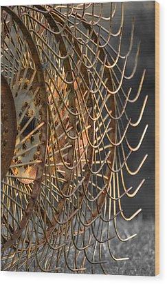 Rustic Hay Rake Wood Print by Brian Stevens
