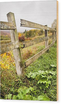 Rustic Landscapes - Broken Fence Wood Print by Gary Heller