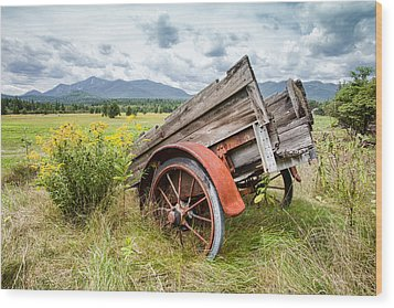 Rustic Landscapes - Wagon And Wildflowers Wood Print by Gary Heller
