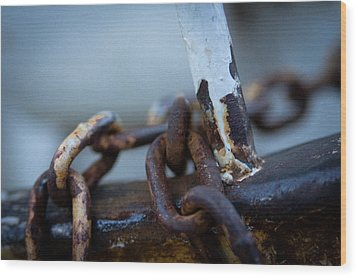 Wood Print featuring the photograph Rusty by Erin Kohlenberg