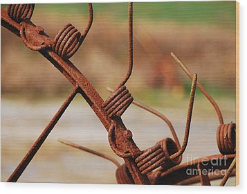Rusty Tines Wood Print by Mary Carol Story