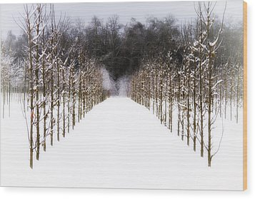 Wood Print featuring the photograph Ruths Winter Scene by Russell Styles