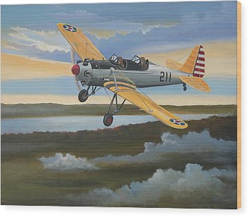 Ryan Pt-22 Recruit Wood Print by Stuart Swartz