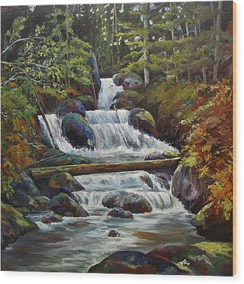 Ryans Falls Wood Print by Suzanne Tynes
