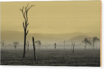 S P I R I T  Land Wood Print by Holly Kempe