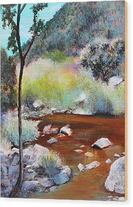 Sabino Canyon Scenes 2 Wood Print