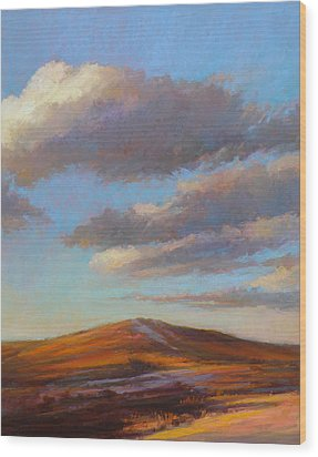 Sacred Dune Wood Print by Ed Chesnovitch