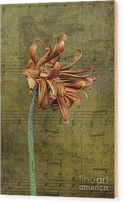 Wood Print featuring the digital art Sad Song by Shirley Mangini