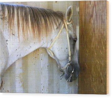 Saddle Break Wood Print by Kathy Barney